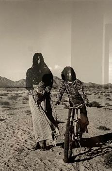 Sonoran Desert, 1979