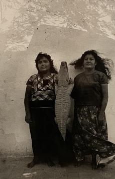 Festival del lagarto (Alligator Festival(, Juchitán, 1985