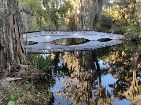 bridge at Magnolia Plantations & Gardens