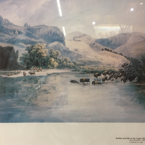 Buffalo and Elk on the Upper Missouri by Karl Bodmer