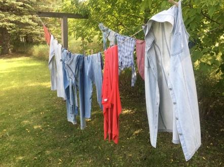 pioneer laundry