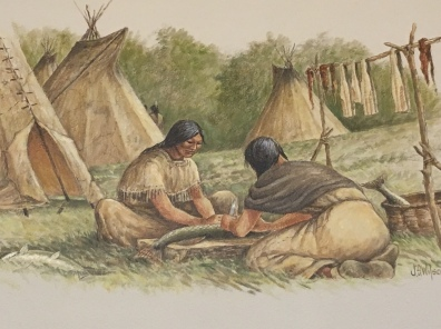Native Americans by John S. Wilson