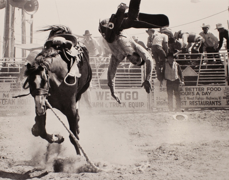 Goodbye Old Paint! A rider and his steed part company at the National Hight School Rodeo which took place at the Fargo Fairgrounds in 1970.