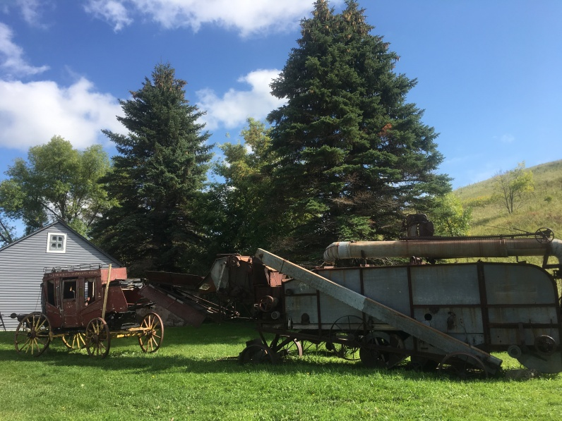 Stage Coach and Pony Rides