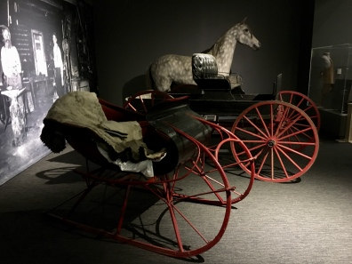 horse and buggies