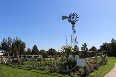 windmill and garden