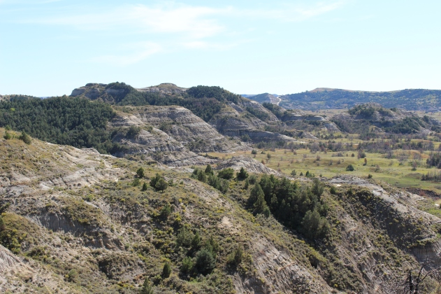 Boicourt Trail