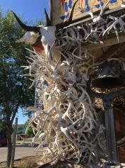 antlers at Bob's