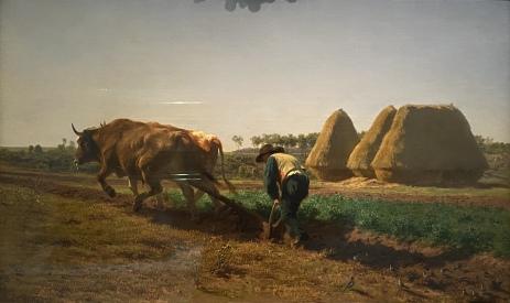 Ploughing Scene, 1854 by Rosa Bonheur