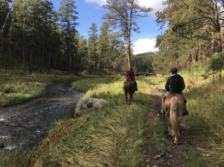 trail ride in Custer State Park