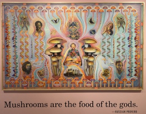 Mushrooms are the food of the gods. - Russian proverb