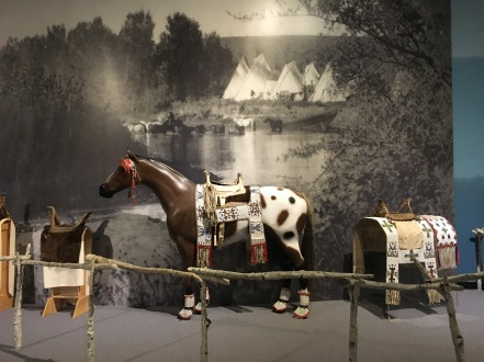 Native American horse