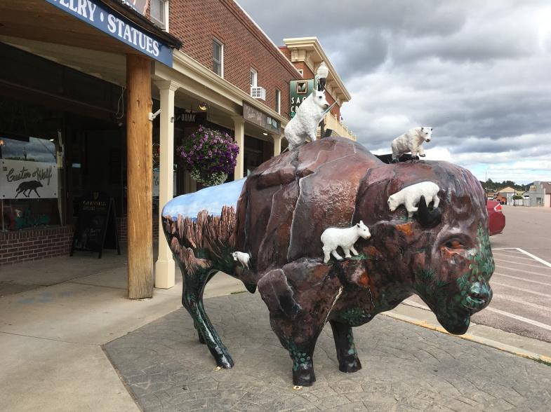 Bison in Custer, South Dakota