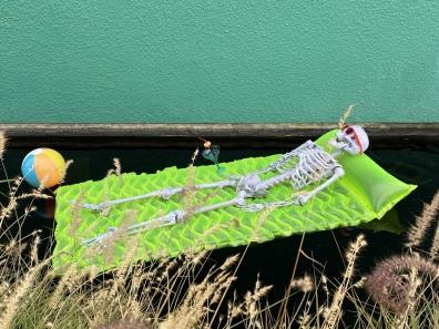 skeleton at Denver Botanic Gardens