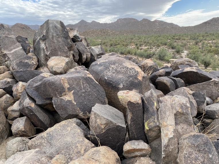 Saguaro National Park West, Tucson, AZ