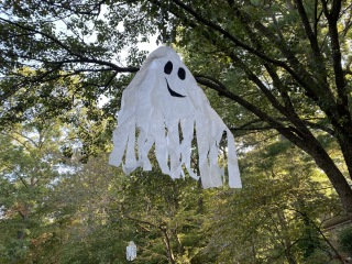 ghosts in the trees in Reston
