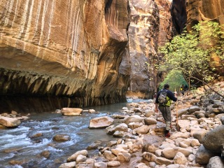 the Narrows at Zion National Park (photo by Ariana Sites)
