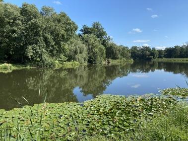 walk around Lake Anne