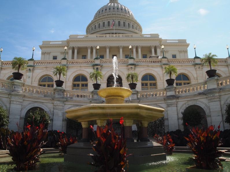 U.S. Capitol, D.C.